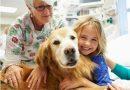 Ospedale pediatrico Meyer: si alle visite a 4 zampe!