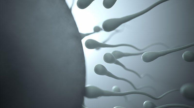 Rimanere incinta: difficoltà e consigli